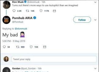 Elon musk tesla autopilot porn star car sex