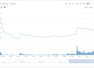 Investors Prefer Ethereum (ETH) to Bitcoin Cash (BCH)